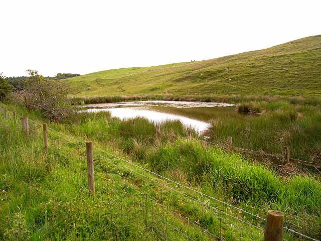 Pond beside the South Tyne Trail, Plenmeller