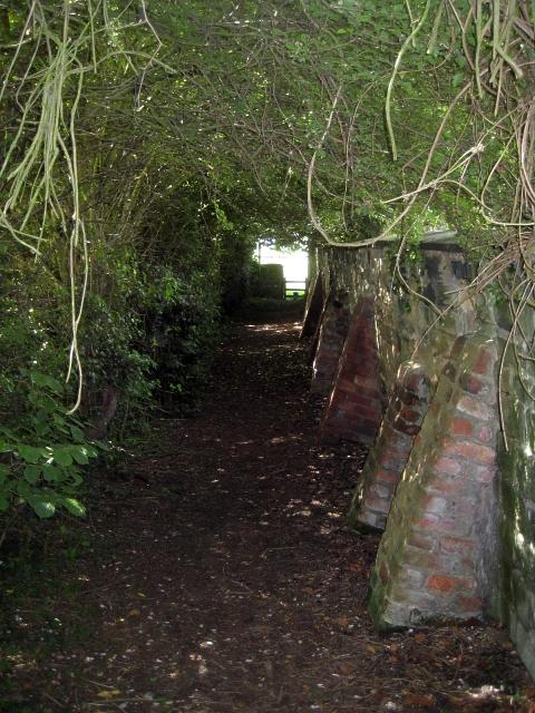 Public footpath, Heath Common (3)