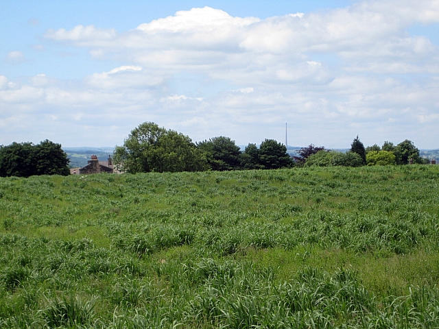Public footpath, Heath Common (9)