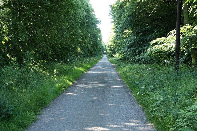 Lound Hall lane