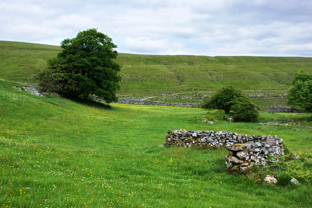 "A ""U"" shaped wall, presumably built as a shelter for sheep"