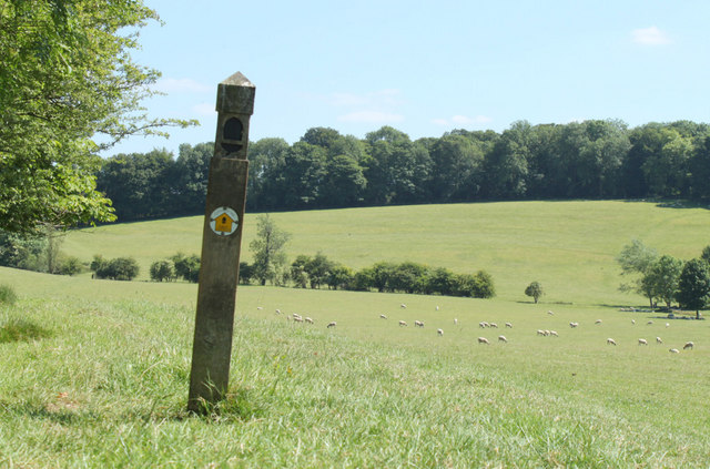 2010 : Waymarker post and sheep on The Cotswold Way