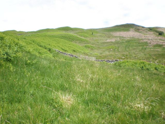 Dry stane dyke crossing moorland above Loch Katrine