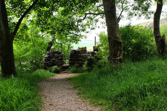 A footbridge provides the exit to Rais Wood