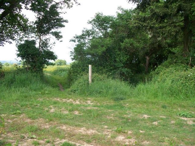 Path crosses bridleway