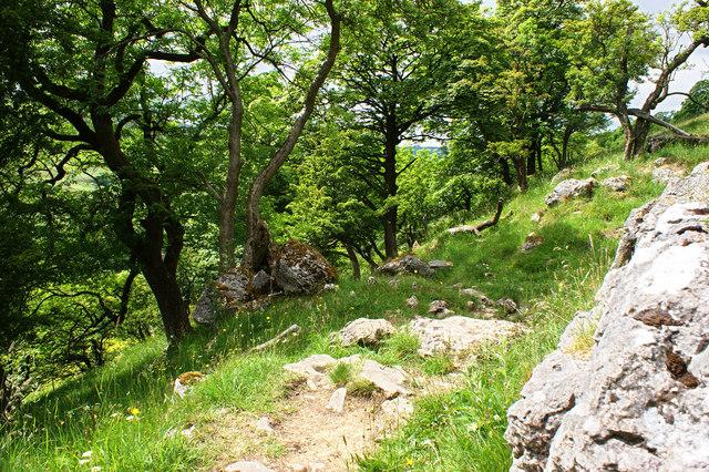 The path down to Yockenthwaite