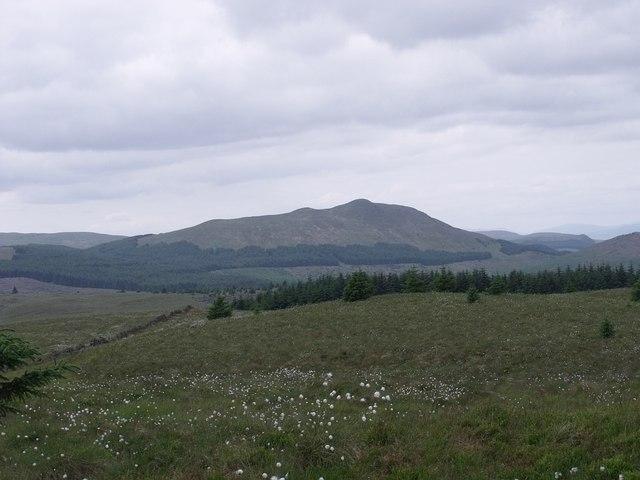 Treeline around Garrel Hill