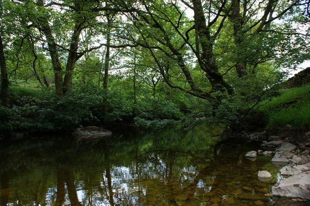 The River Wharfe below Strans Wood
