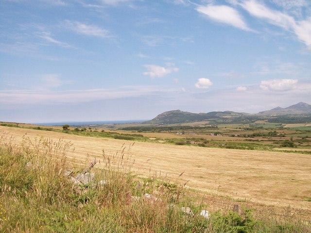 Harvested hayfield at Tyddyn-yr-haint