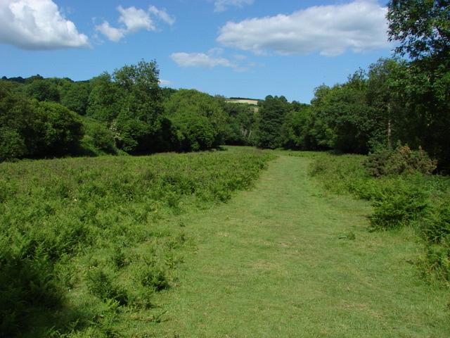 Fields near Lustleigh