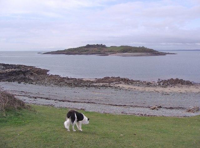Looking towards Rough Island