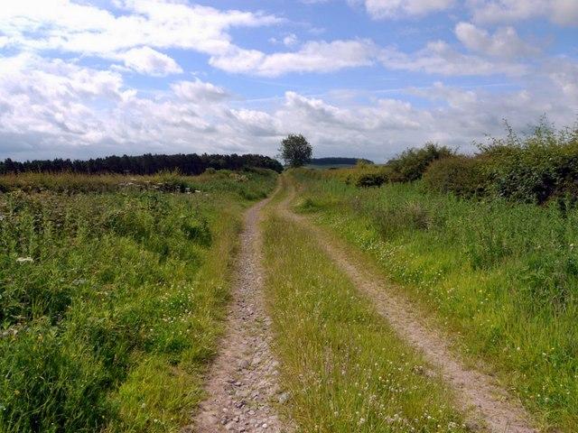Track to Blinkbonny