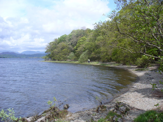 Shoreline of Coniston Water