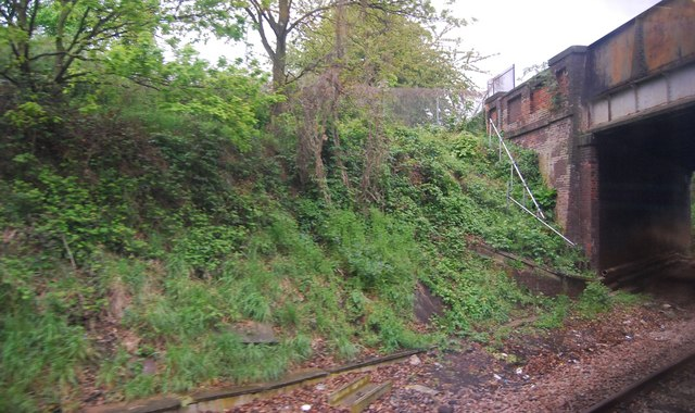 Railway cutting by Gloucester Road Bridge