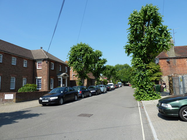 Summer in St Peter's Road
