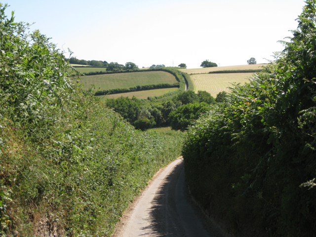 Lane to Purcombe Cross