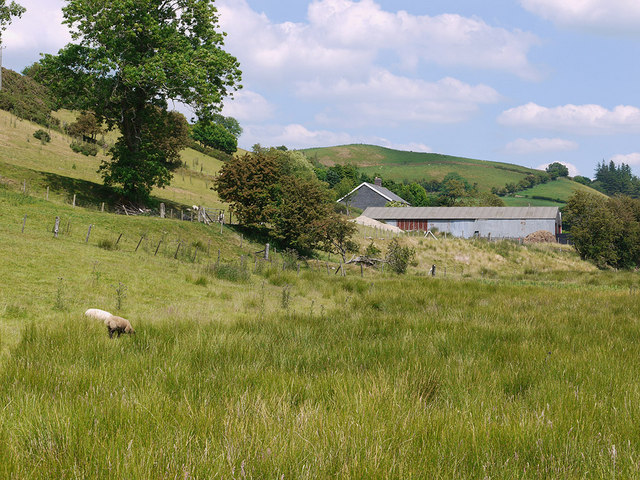 Field by Tan-y-llwyn