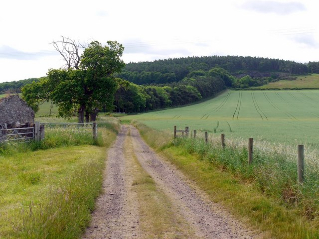 Track to Flodden Hill