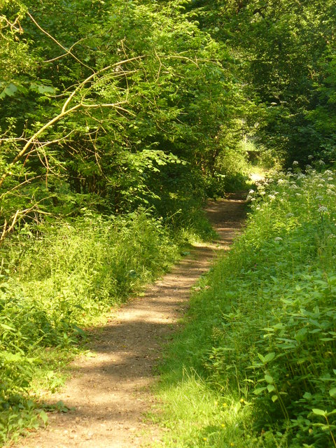Footpath to Dunsfold Church