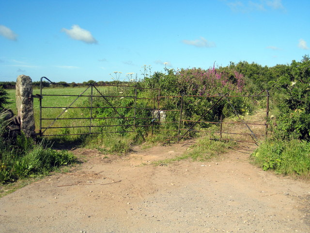 Old iron field gates