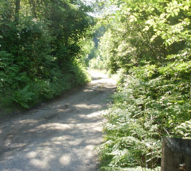 Path into Graig Fawr, Aberbeeg