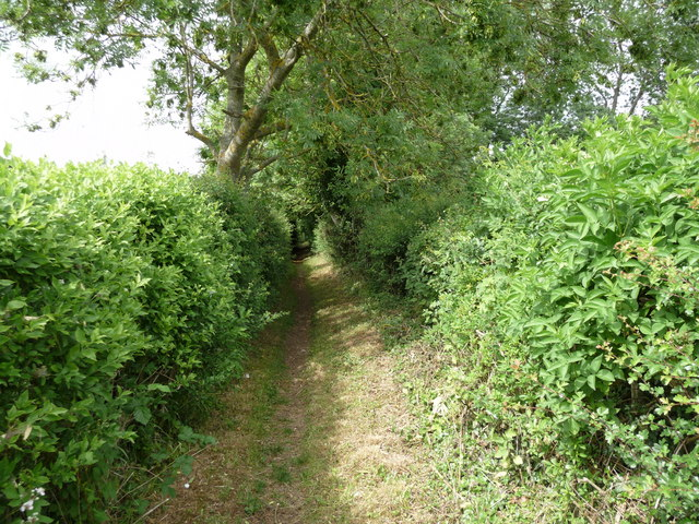 Crawley - Footpath