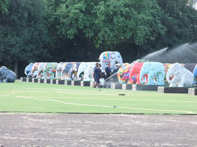 Watering the elephants at London's Elephant Parade