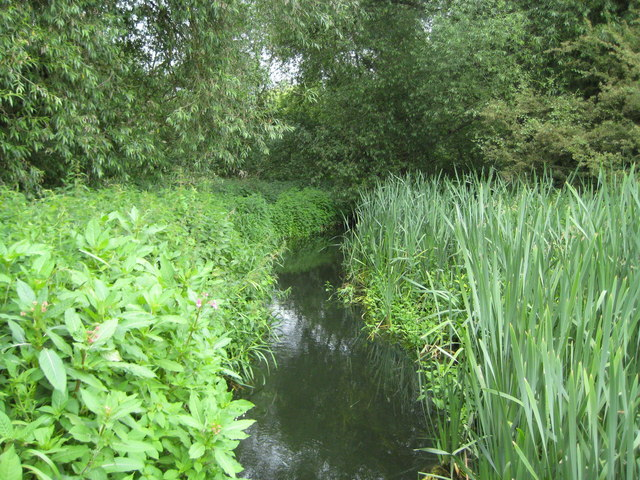 Wraysbury River on Staines Moor