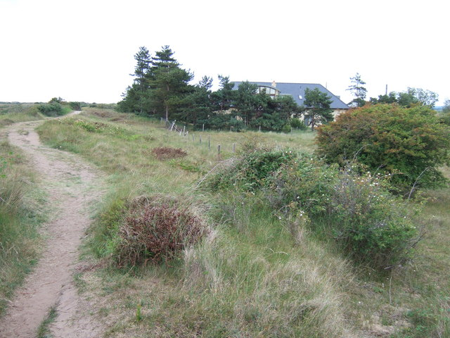 Footpath in the sand dunes