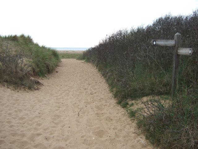Footpath through the sand dunes