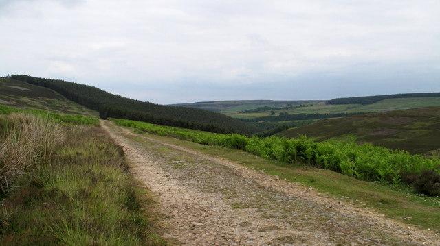 Estate Road & Valley of Beldon Burn