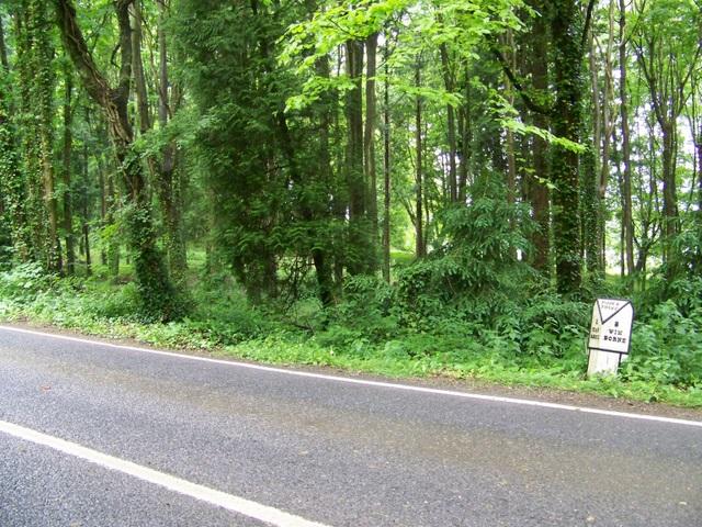 Milepost near Wimborne St Giles