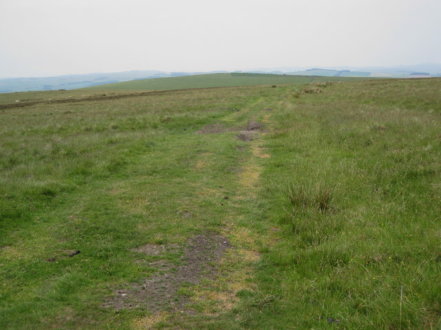 Track on Hog Hill