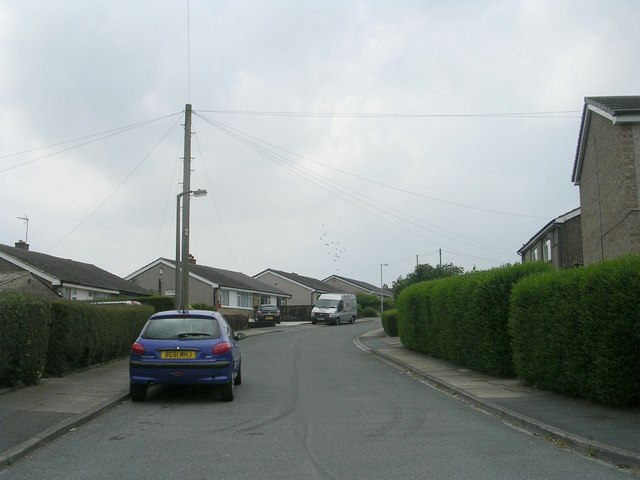 Egerton Grove - Cote Lane