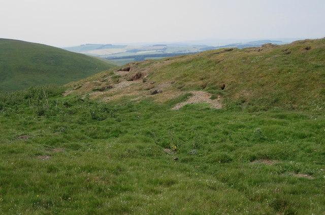 Ancient settlement above Hazeldean Wood