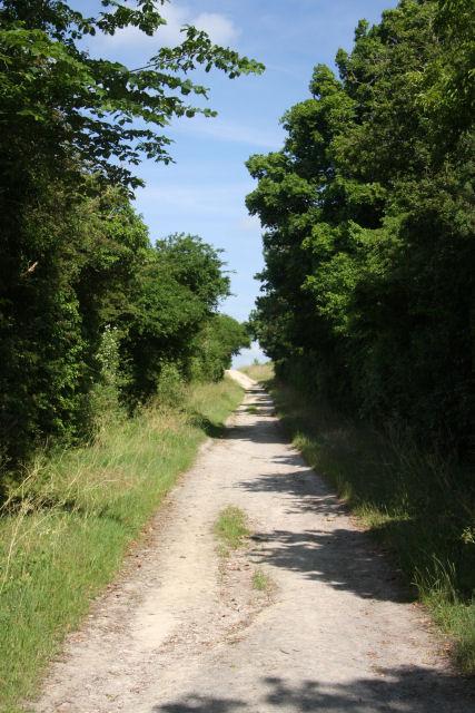 Icknield Way, near Snailwell