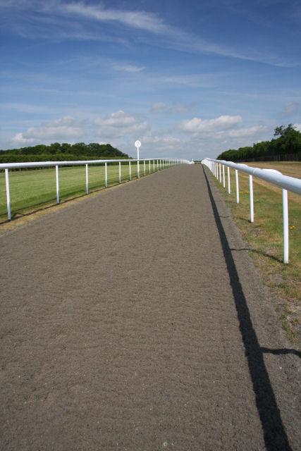 Training gallops near Snailwell