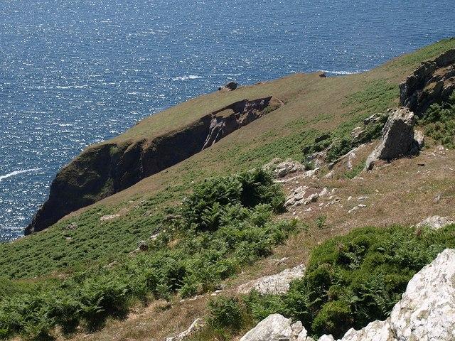 Coastal slope above Steeple Cove