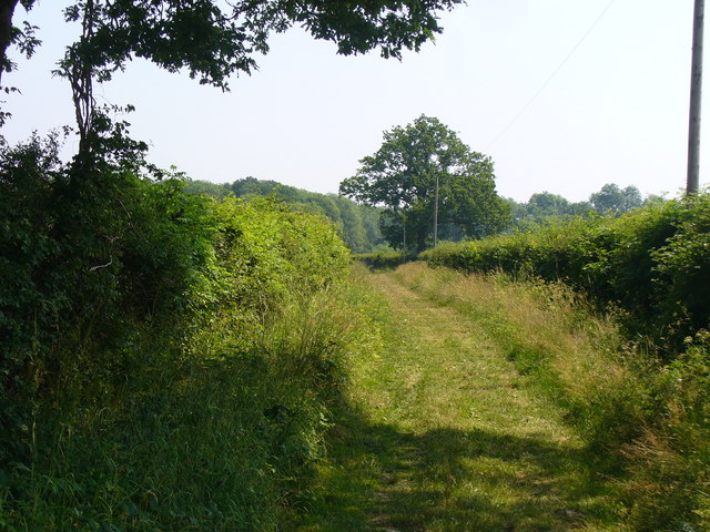 Bridleway East of Dunsfold
