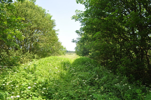Trackbed to Walsingham