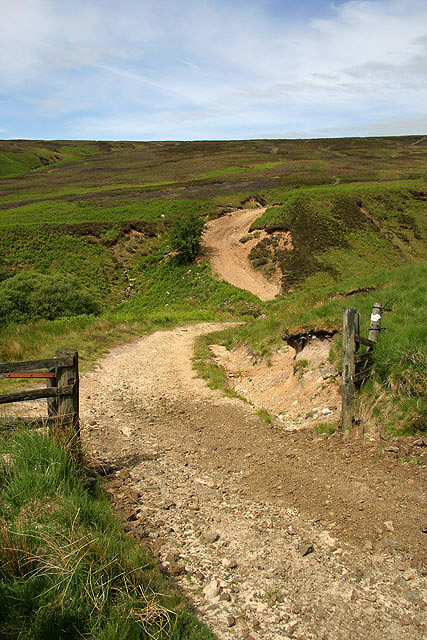 A moorland track to the east of Cooms Fell