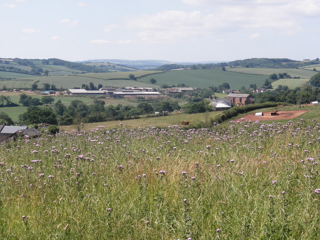 The Yeo Valley, south of Crediton