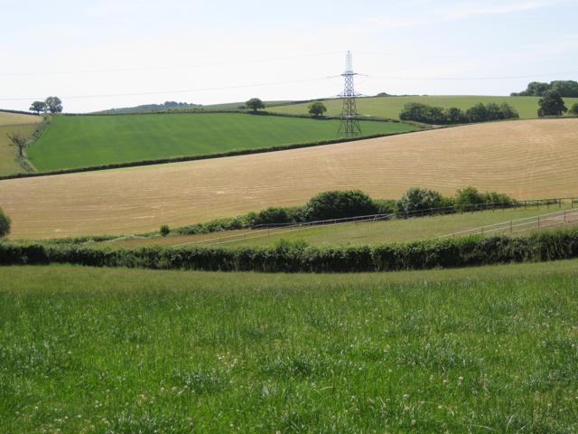 Fields below East Down