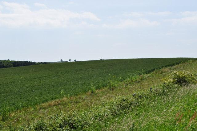 Hillside at Walshingham