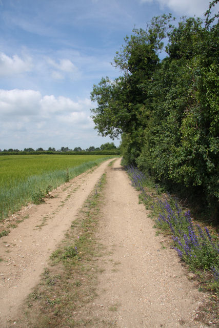 Footpath to Chippenham