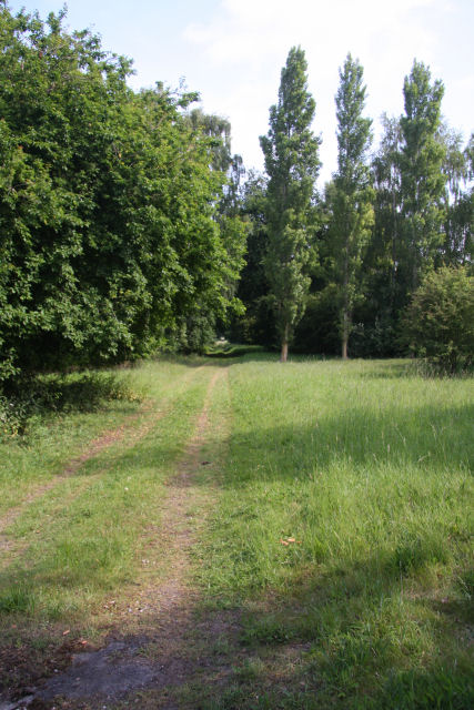 Former driveway to Chippenham Park