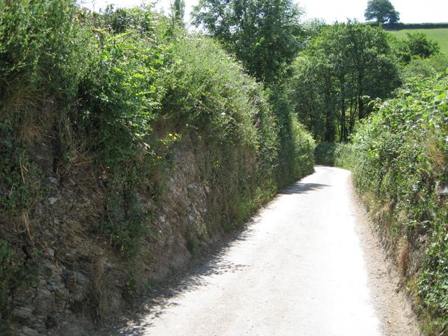 Lane cut through rock