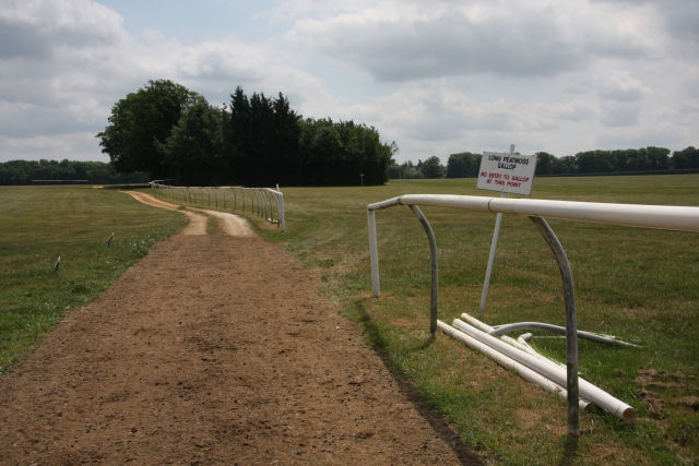 Training gallops at Water Hall