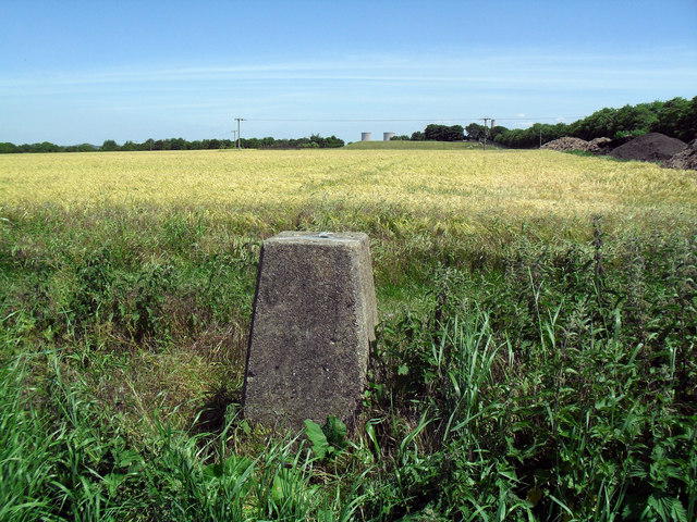 Trig. Point on Steventon Hill