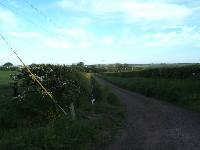 Bridleway from Letham Shank to New Water Haugh